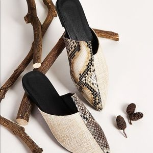 Shoes - Point Toe Snakeskin Flat Mules